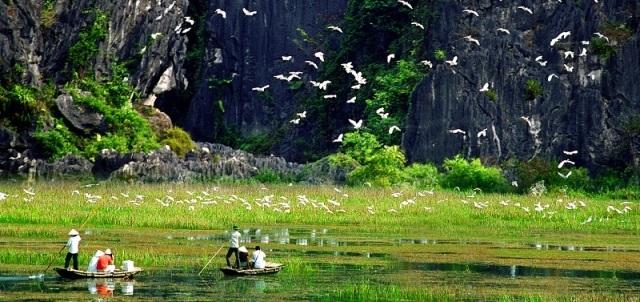 Ninh Binh - baie d'Halong terrestre - balade en barque à la réserve naturelle de Van Long