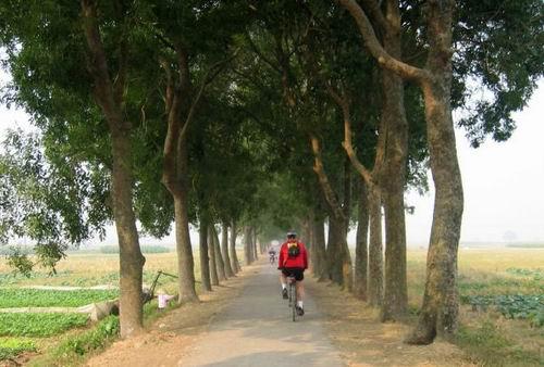 Ninh Binh - baie d'Halong terrestre- Balade à vélo de Tam Coc à Bich Dong