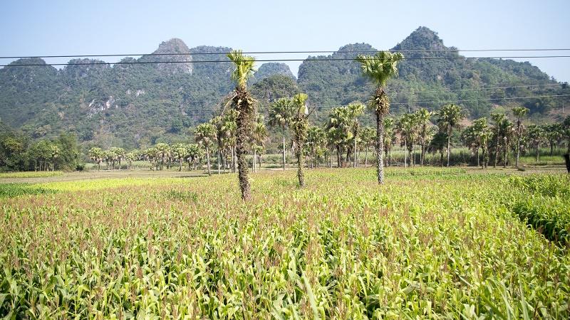 Voyager Ha Giang - region extraordinaire5
