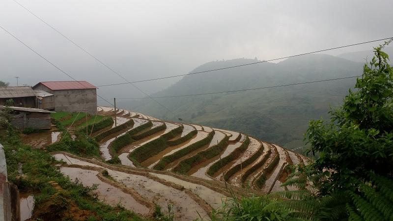 Trung Chai 4