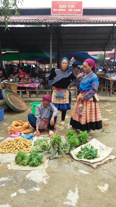 Sapa est devenu un Disneyland? Top 5 des alternatives à Sapa dans le Nord du Vietnam-Bac-Ha-Hmong-fleuris