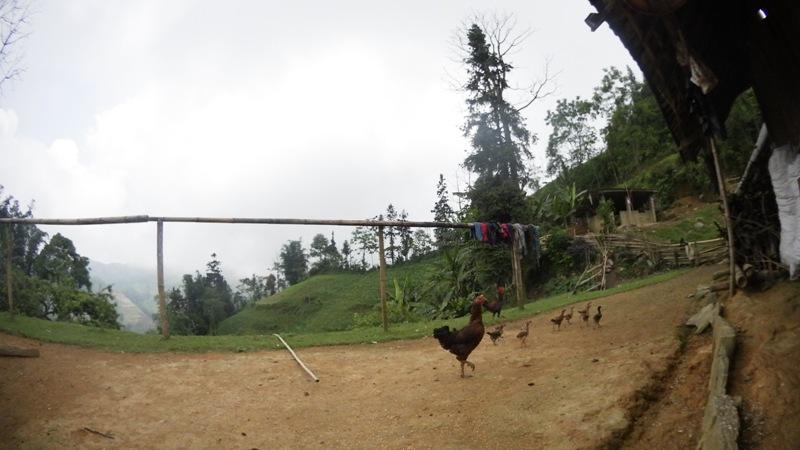 la maison des Hmong à Bac Ha13
