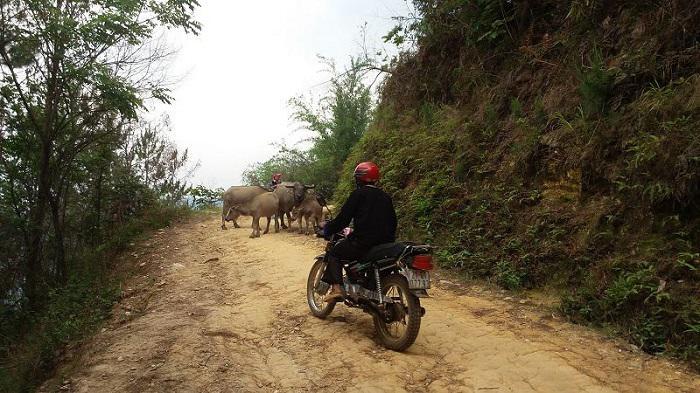 mon-voyage-Mu-Cang-Chai-village-che-cu-nha6