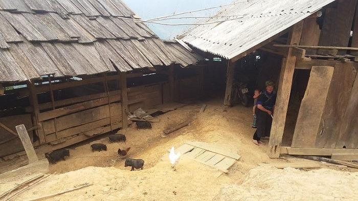 mon-voyage-Mu-Cang-Chai-village-che-cu-nha9