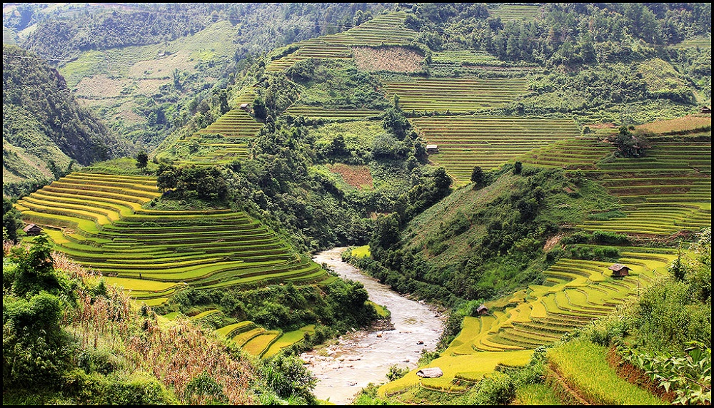 riziere en terrasse au village de De Xu Phinh