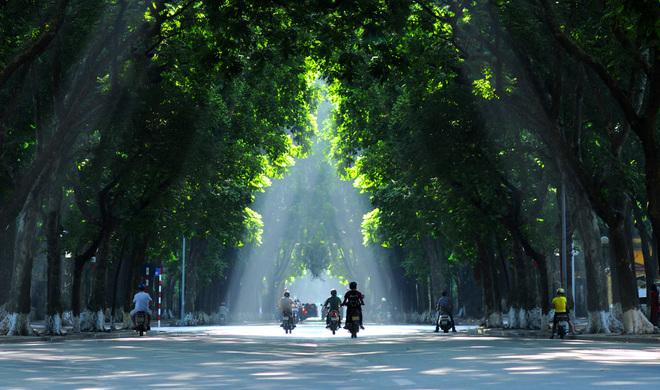 Que faire à Hanoi-rue-Phan-Dinh-Phung