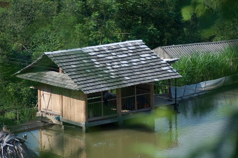 recit-voyage-hoang-su-phi-le-meilleur-endroit-pour-le-trek-au-vietnam-1