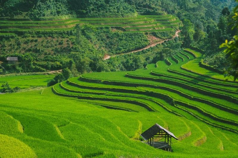 recit-voyage-hoang-su-phi-le-meilleur-endroit-pour-le-trek-au-vietnam-2