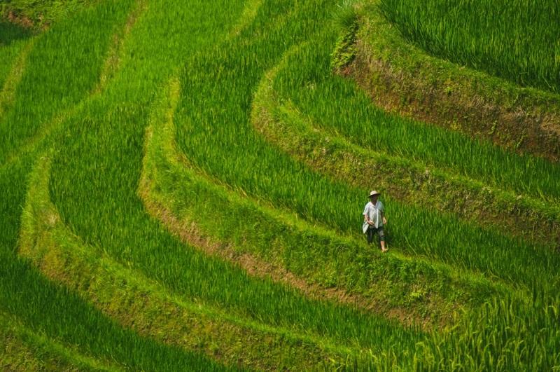 recit-voyage-hoang-su-phi-le-meilleur-endroit-pour-le-trek-au-vietnam-3