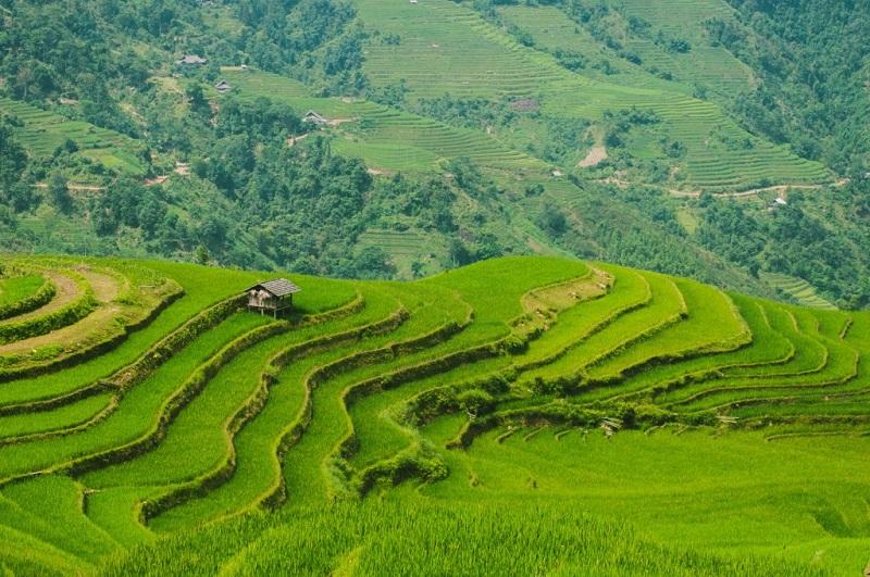 recit-voyage-hoang-su-phi-le-meilleur-endroit-pour-le-trek-au-vietnam-4