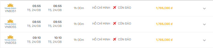 Ho Chi Minh Con Dao en avion-horaires-vols