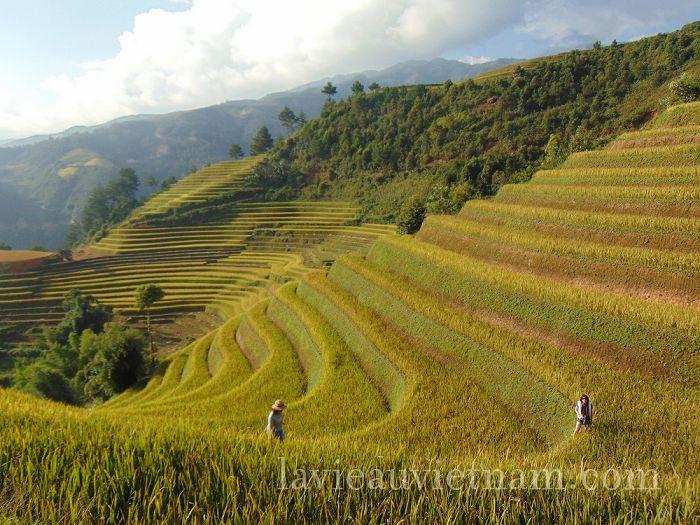rizieres-terrasses-Mu-Cang-Chai-septembre (3)