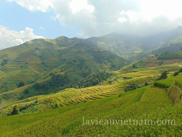 rizieres-terrasses-Mu-Cang-Chai-septembre (6)